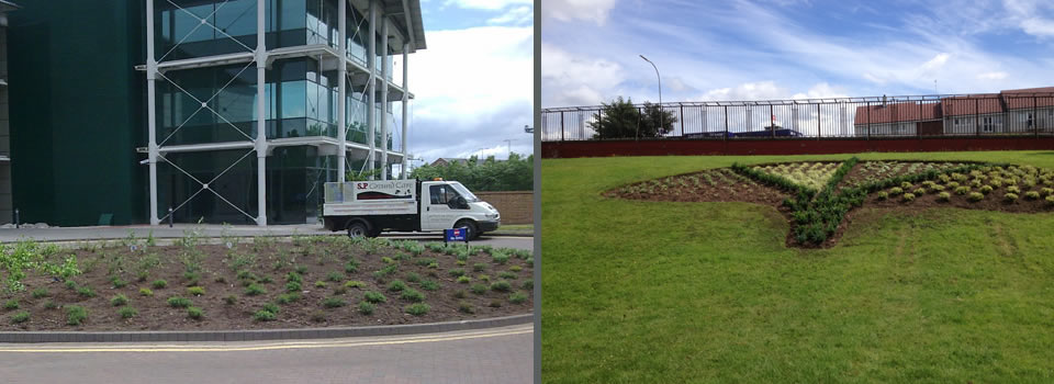 Commercial Groundcare